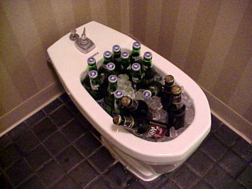 An Idiot S Incomplete Guide To The Bidet Vagabondish