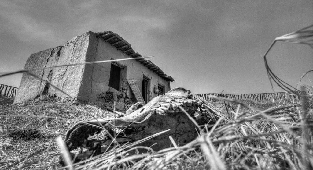 A Camel Jaw and an abandoned house in Kubuqi Desert, Mongolia