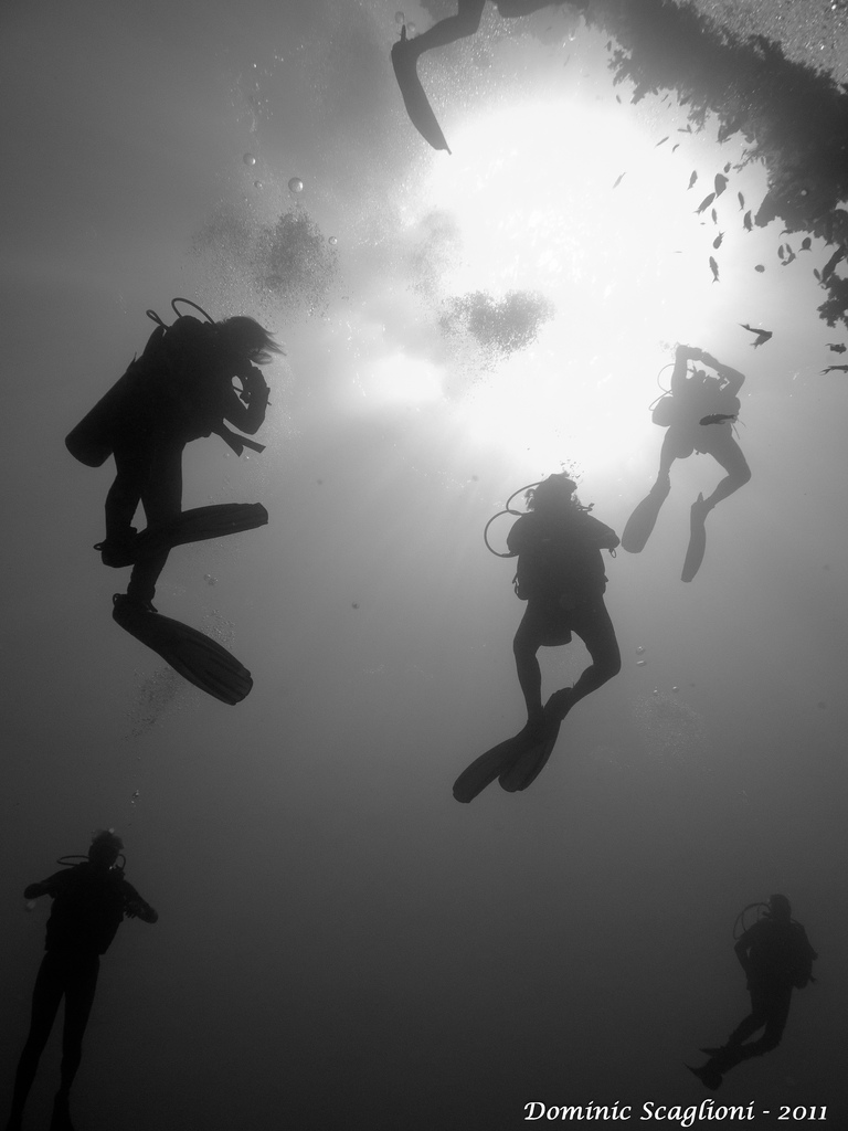 Chain Divers in the Red Sea, Egypt