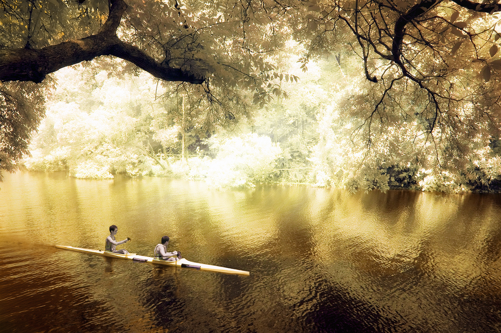 Tandem Kayak in MacRitchie Reservoir Park, Singapore