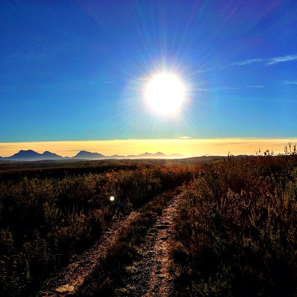 Sunrise Over Gondwana Game Reserve, South Africa