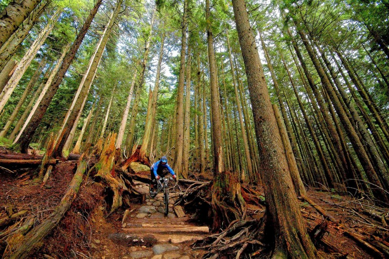 Mountain Biking in Burrard Inlet Indian Reserve 3, British Columbia, CA