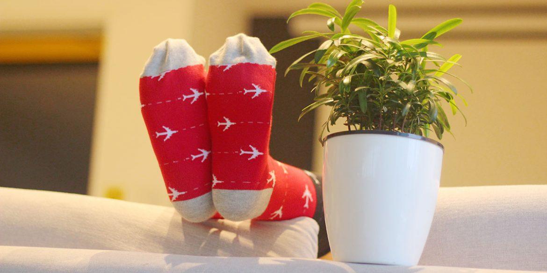 MP Magic Socks - Holiday Trip Travel Socks