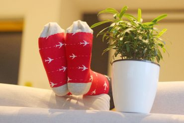 MP Magic Socks - Holiday Trip Travel Socks