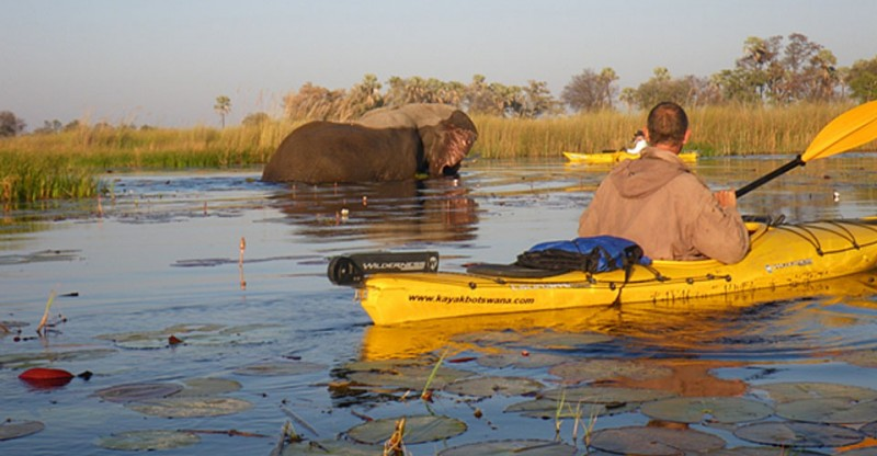 Grab a Paddle! World's First Point-to-point, 120-Mile Kayaking Expedition Across Botswana's Okavango Delta