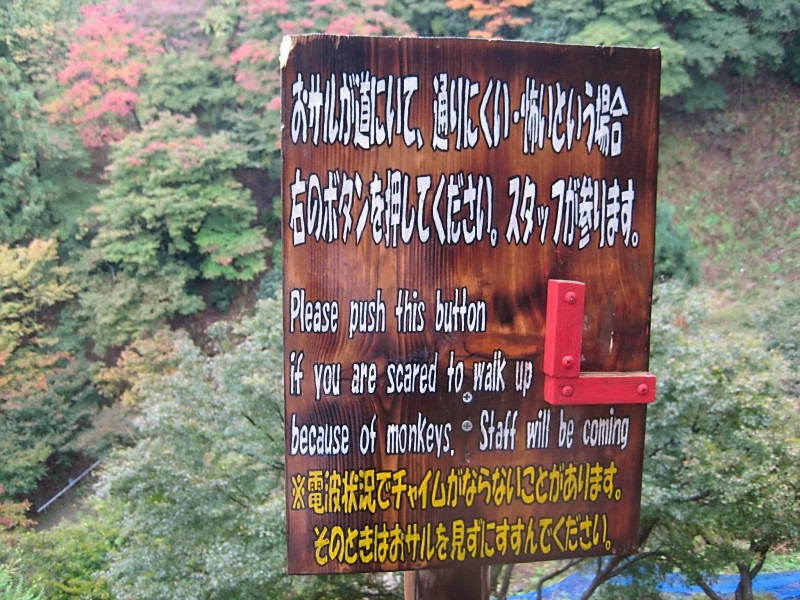 A Not-So-Reassuring Sign, Arashiyama Monkey Park
