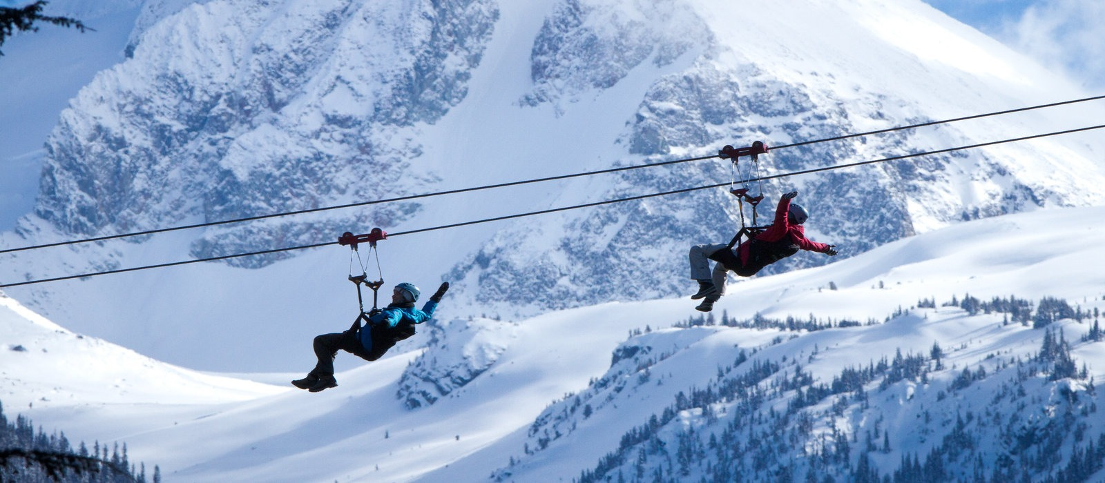 Superfly Ziplines+Dinner Tour, Whistler, British Columbia, Canada