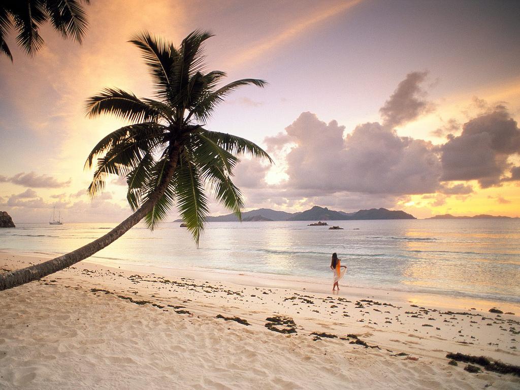 Twilight Paradise at La Digue, Seychelles